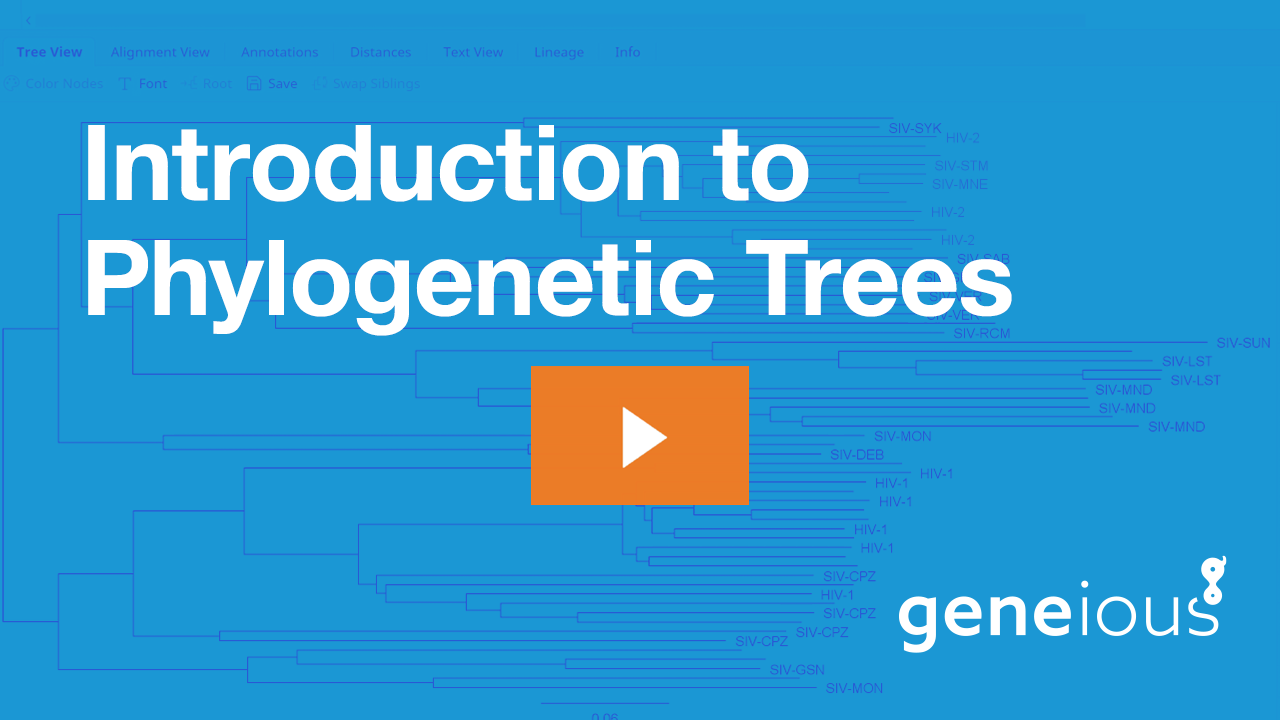 gn-introduction-to-phylogenetic-trees-playbutton